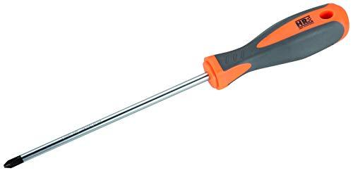 RH 170419 Destornillador, Naranja/Negro, PH2x100mm
