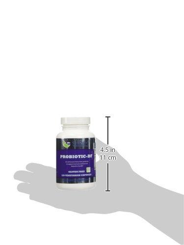 PROBIOTIC-ND (DF) Prebiotic and Probiotic, Non Dairy Formula with Acidophilus, Lactobacillus, and Bifidobacterium, Dairy Free, 100% Vegetarian Vegan, 5 Billion CFU's per Cap, 120 Caps