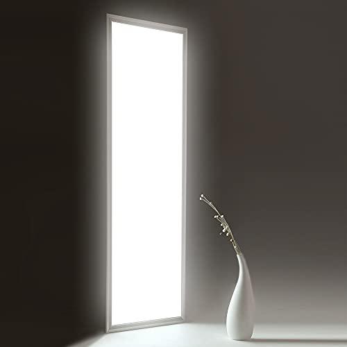 HOMEDEMO Deckenleuchte LED Panel 120x30cm Ultraslim Modern 40W Neutralweiß 4000K Deckenlampe für Schlafzimmer Küche Flur Wohnzimmer Wandleuchte innen mit Befestigungsmaterial und Trafo Silberrahmen