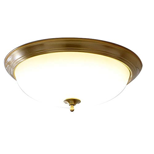 SHYPT Lámpara de paso, lámpara de techo, lámpara de tubo LED, entrada de puerta de hierba dorada, lámpara de pasillo de cristal moderna simple, luz de porche