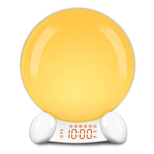 DreamSky Wake Up Light Alarm Clock Radio - FM Radio Alarm Clock for Heavy Sleepers, Sunrising Simulated, Natural Sounds, Sleep Aid White Noise, Nightlight 7 Color Lights, USB Port, Snooze, Dimmer
