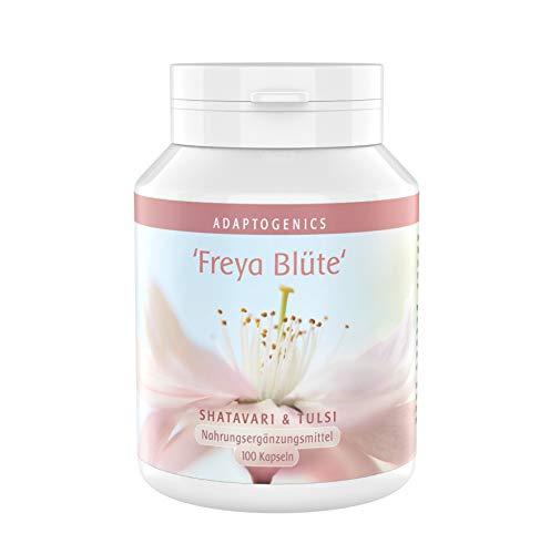 Shatavari/Tulsi - Ayurveda Synergieeffekt • 3 Monate Vorrat • Starkes Konzentrationsverhältnis: 10:1 Extrakt • je 237,50 mg Shatavari/Tulsi • ohne Zusätze