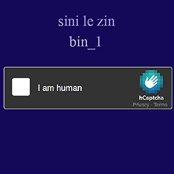 Bin_1