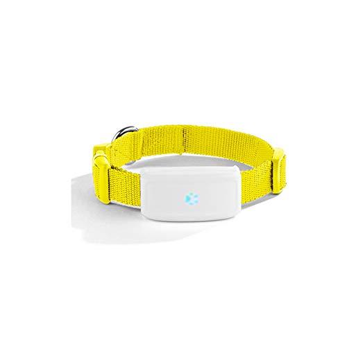 EODPOT Mascota para Perros/Gatos Monitor de Actividad y Seguimiento en Tiempo Real,Mini Herramienta de Seguimiento de rastreador GPS Impermeable,para Perros y Gatos domésticos-Yellow
