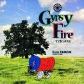 Gypsy Fire Tzigane by Esin Engin