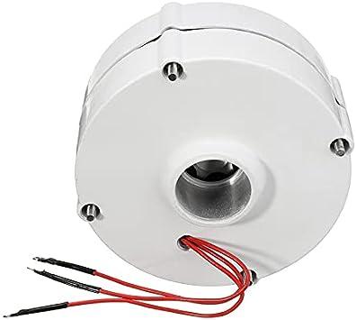 LHSJYG AC Motor,Motor De Ca 600 0W 12V 24 Generador de turbina de energía eólica eléctrica volti sin escobillas Motor alternador de generador de imán Permanente