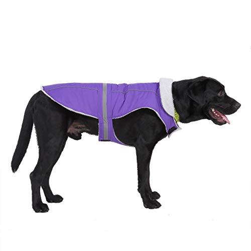 Deloito Haustier Regenmantel Reflektierend Regenfest Daunenweste Hunde Kostüm Warme Winterjacke Wasserdichter Mantel für Welpen Mittlerer und Großer Hund (Lila,X-Large)