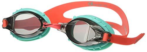NIKE Kids' Big Youth Chrome Swim Goggle, Smoke, One Size