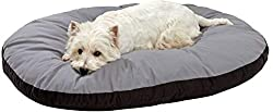 dog bed price online, best dog bed, dog bed for puppy, dog bed amazon, dog bed price online, online dog bed price amazon