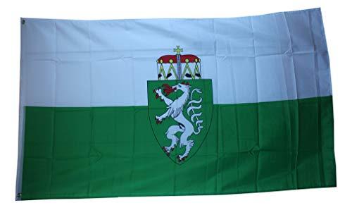 Yantec Steiermark Flagge Fahne 90 * 150 cm