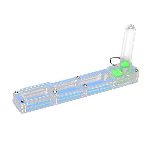 HXHON Ameisenzuchtbox aus Acryl für Insekten, Blau