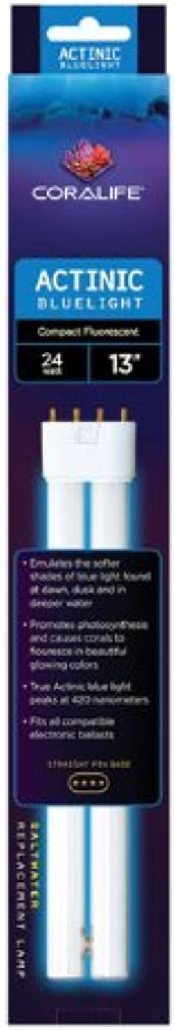 Actinic bluee PC Lamp  Straight Pin  420nm  24W  13in.