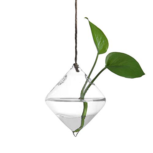 Glass Terrarium Container Flower Planter  $7.20 (80% OFF)