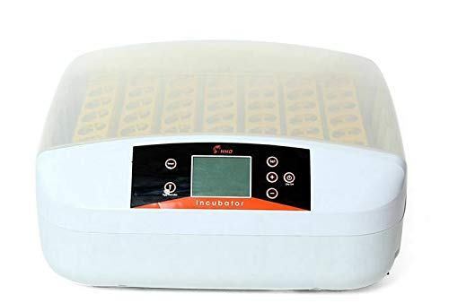 WUPYI2018 Vollautomatische Inkubator,Brutautomat 56 Eier,mit Digitales Intelligentes Steuersystem