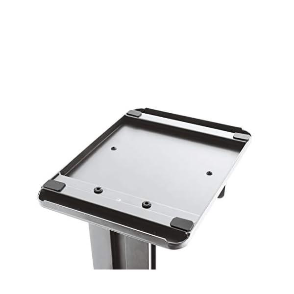 Xavax 00110235 - Organizador de pie (Aluminio), Color Negro y Plateado