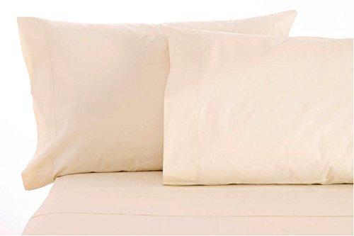 Sleep & Beyond Organic Cotton Sheet