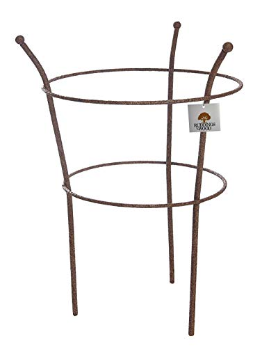 Ruddings Wood Rust Peony Herbaceous Plant Supports Metal Shrub Cages Steel Outdoor Garden Cone Rings Medium 45 cm high x 30 cm diameter