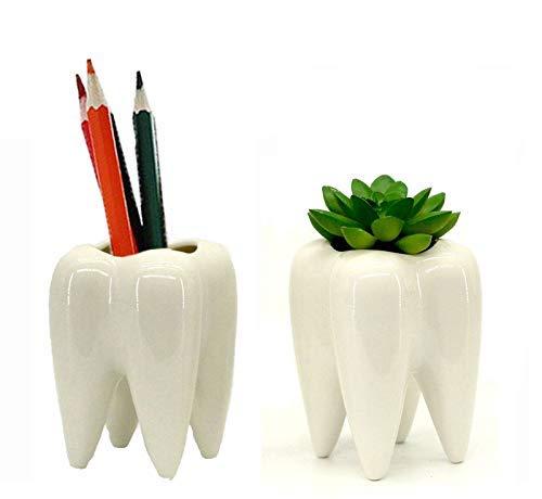 Gift Prod 2 Pcs Teeth Pots White Ceramic Succulent Planter Pots