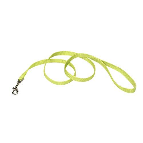 Coastal - Single-Ply Dog Leash, Lime, 5/8' x 6'