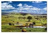 puzzle de 500 pièces sur le Serengeti