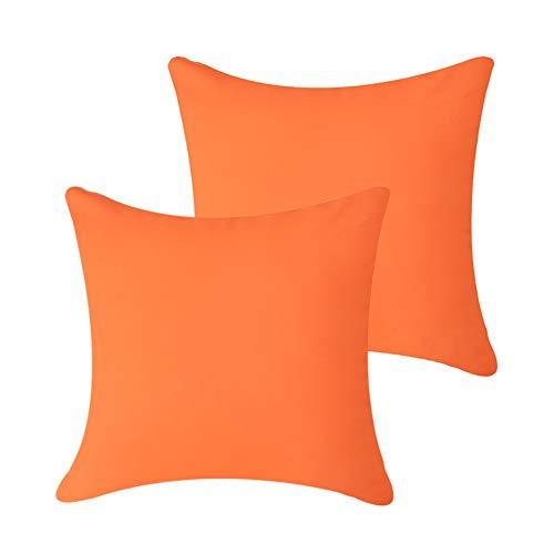 Pannow Lot de 2 housses de coussin imperméables pour extérieur, housse de coussin décorative super douce pour intérieur, extérieur, canapé de jardin, canapé en rotin 50,8 x 50,8 cm