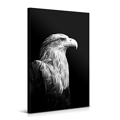 Cuadros Modernos de Decoración para Salón y Dormitorio - Águila, 80 x 120 cm - Lienzo de Poliéster y Bastidor de Madera - Color Blanco y Negro, LEN-065
