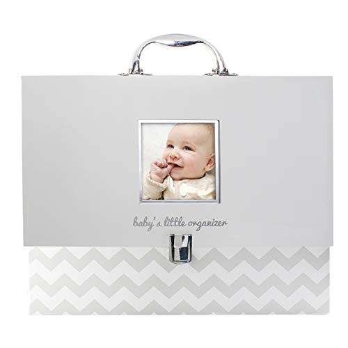 Pearhead Organizador de documentos de bebê, pasta de arquivo para guardar os discos do bebê, é um ótimo presente para novos pais ou adição ao registro de chá de bebê, cinza chevron