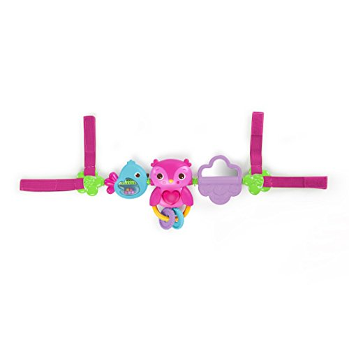 Bright Starts Busy Birdies Carrier Toy Bar Jouet