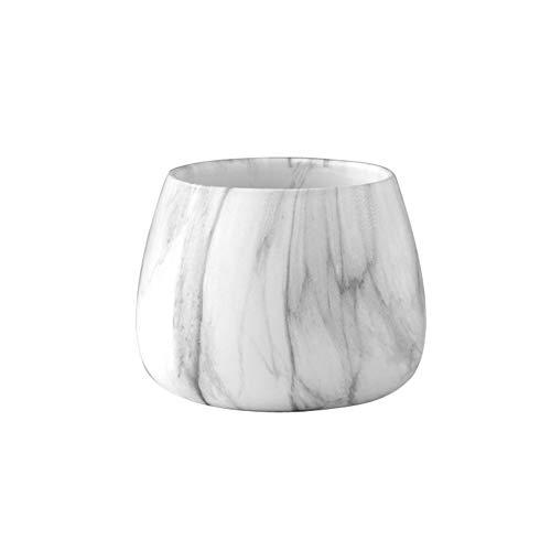 Vasi in Ceramica, Piante A Base di Carne in Marmo Casa Pluralità Colore Dorato Idroponica Circolare Piatto (Color : White)