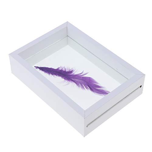 P Prettyia Massivholz Fotorahmen, Grafik Display Rahmen, Bilderrahmen Geschenke Für Pflanzenproben Insektenvertretung - Weiß 10x13,5x4cm, wie beschrieben