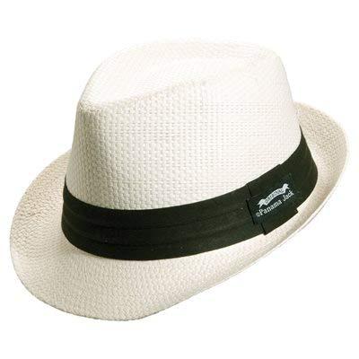 Panama Jack Solid Ribbon Fedora Hat…