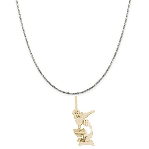 Rembrandt Charms Two-Tone Sterling Silver Microscope Charm on a Sterling Silver Rope Chain Necklace, 16'