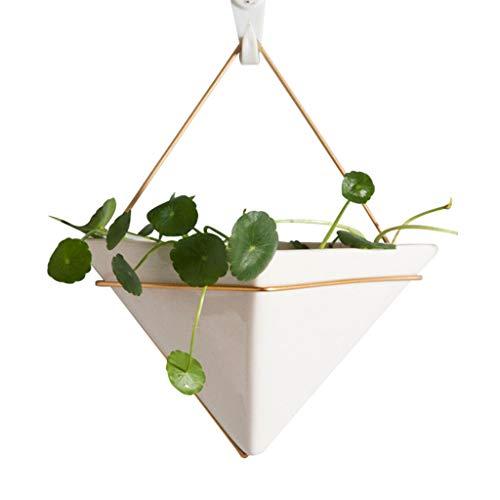 Junlinto, wanddecor, moderne hangende plantenvaas, geometrische muurdecoratiehouder - ideaal voor Succulente planten, luchtplant, kunstplanten