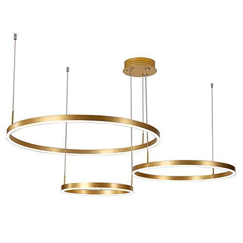 HCMNME LED Rotondi a Sospensione a Cerchi circolari Anelli appesi Soggiorno Lampada a Sospensione lampadario Moderno Nuovo luci della Hall lampade Creative Ristorante lampade (StyleB,60+80+100cm)