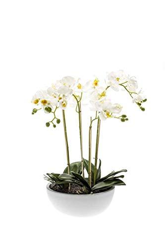 Artplants Orquídea phalaenopsis Artificial Mina en Maceta cerámico, Blanco, 60cm - Orquídea Falsa/Flor de plástico