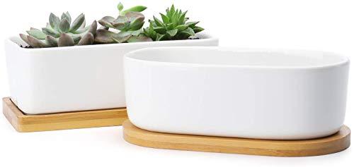 MMBOX - Vasi per piante grasse, 15 cm, rettangolari, in ceramica, piccoli contenitori, per cactus, bonsai, vasi da fiori con foro di drenaggio, sottovaso in bambù, set da 2 pezzi, colore bianco
