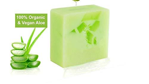 Aloe Vera Bio Seife | Organisch & Vegan | Natürliche, Feuchtigkeitsspendende & hautpflegende Handseife, 100g | Erwachsene & Babypflege | Premium Qualität | Aloe Plus Secret Essentials
