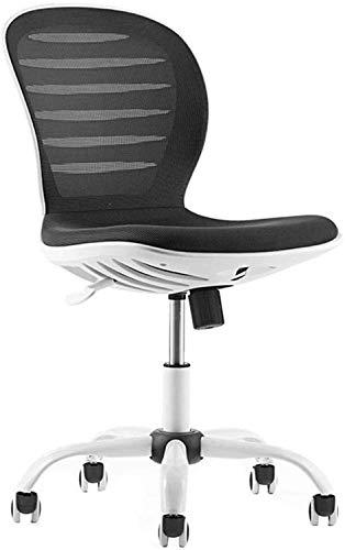 ZouYongKang MID Back Swivel Lordosenstütze, Computer ergonomischer Mesh-Stuhl, armlose Bürostuhl-Konferenz Computer-Stuhl faul Kleiner Drehstuhl Moderne minimalistische Mitarbeiter Mesh-Sitzstühle