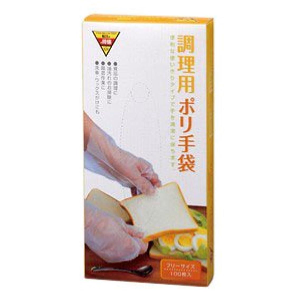 びっくりするについてリスキーなコーナンオリジナル 調理用ポリ手袋 100枚入 KHD05-7123