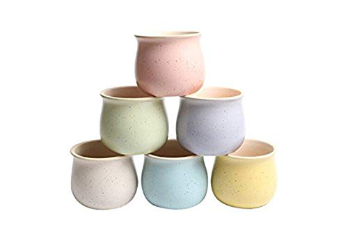 Fasmov 2.5 Inch Small Ceramic Plant Pot Flower Pots Planters Containers, Pack of 6