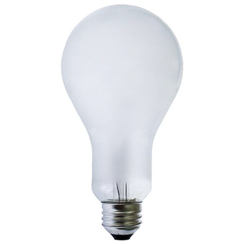 ECA - Ushio - 250 Watt - 120 Volt - Incandescent Photo Flood Lamp - Ushio 1000265