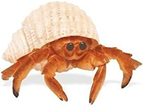Best safari ltd hermit crab Reviews