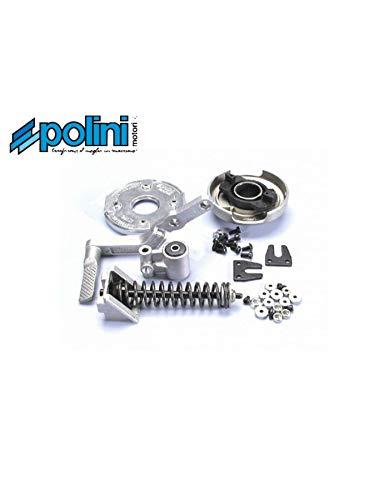 Motodak Variomatik-Set Polini Spring Peugeot 103 MVL RCX SP SPX Vogue Feder