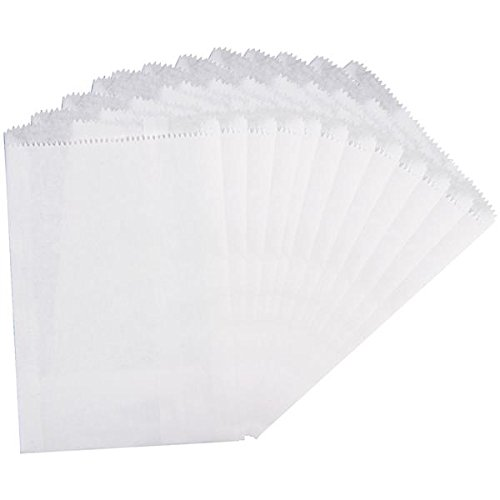 Canvas Tela Corp Grandi Sacchetti di Carta, 12,7cm da 19,1cm, Bianco, Pezzi