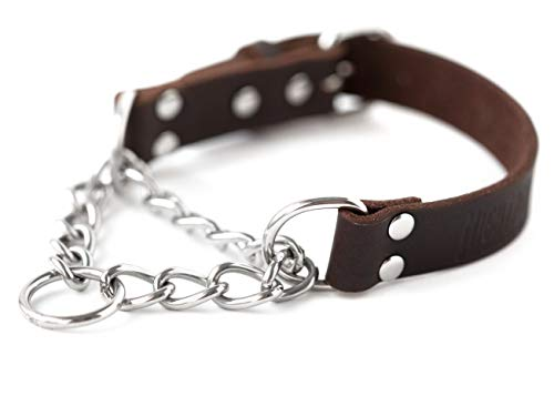 Mighty Paw Leather Martingale Collar