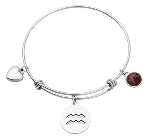 KUIYAI Stainless Steel Zodiac Sign and Birthstone Charm Necklace Bracelet (February-Aquarius bracelet)