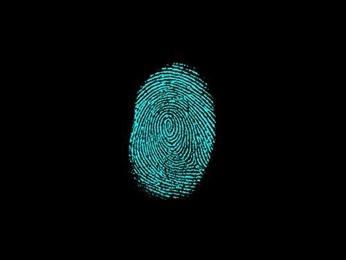 Biometric (The Macabre Book 5)