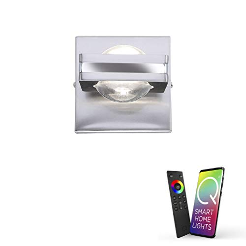 Paul Neuhaus, Q-Fisheye, LED Wandleuchte, 2-flammig, dimmbar mit Fernbedienung, Alexa-fähig, Smart Home, Wandlampe, RGB-Farbwechsel, warmweiss, drehbar, stahl