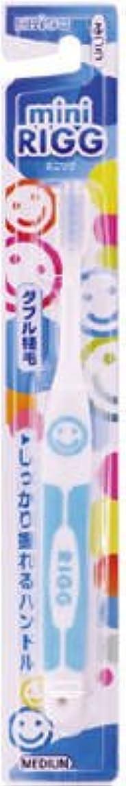 愛パフしつけエビス エビスミニリグハブラシ ふつう(歯ブラシ)小さなお口でもしっかり磨けるヘッドサイズ ※色は選べません×360点セット (4901221001905)