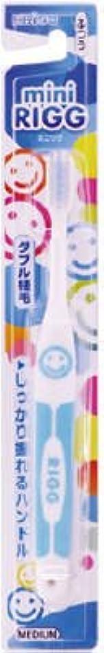 紳士気取りの、きざなわかりやすいワックスエビス エビスミニリグハブラシ ふつう(歯ブラシ)小さなお口でもしっかり磨けるヘッドサイズ ※色は選べません×360点セット (4901221001905)